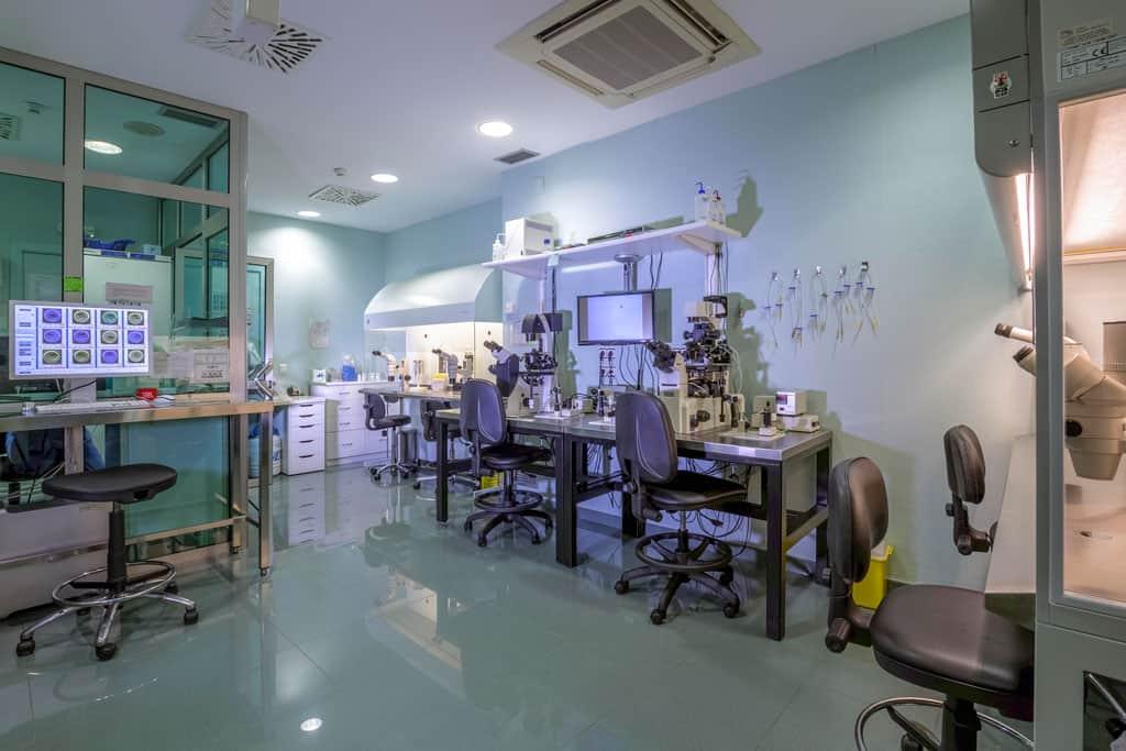 Laboratorio de FIV | URE Centro Gutenberg
